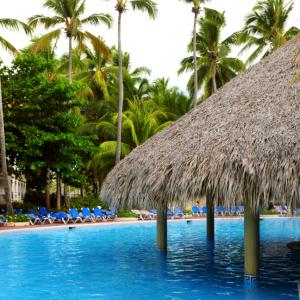 Punta Cana swim up bar